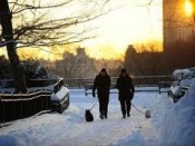 Enjoy scenic walking paths if traveling with pets to New York City