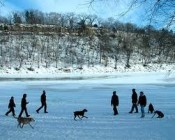 If traveling with pets to Minneapolis in winter, you will find it extremely beautiful