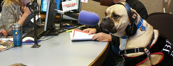 Radio Interviews Featured Image