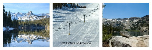 Photo of Mammoth Lakes shown at Pet Hotels of America