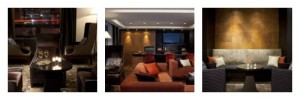 Affinia Selburn NYC a pet friendly hotel listed at Pet Hotels of America