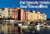 Pet friendly hotels near Disneyworld