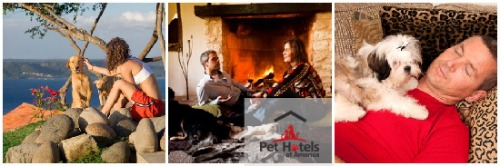 Dog friendly lodging at Pet Hotels of America