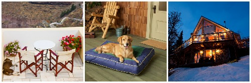 Dog friendly lodging in homes
