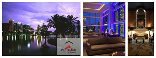hotels dog friendly are featured at Pet Hotels of America