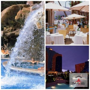 pet friendly hotel-Las Vegas that is a favorite