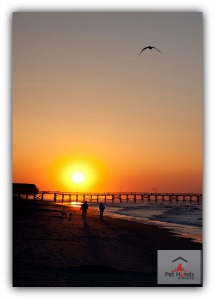 pet friendly hotels Myrtle Beach