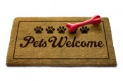 Dog-Friendly Hotels Doormat