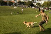 Make sure to visit Dolores Park if traveling with pets to San Francisco