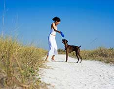 woman playing frisbee with dog on beach