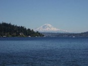 Take dogs hiking in Seattle at Seward Park for a great experience