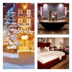 St. Regis Aspen - A pet friendly hotel