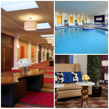 Pet friendly hotel The Sheraton Albuquerque Uptown
