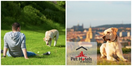 parks and pet friendly hotels in America's cities
