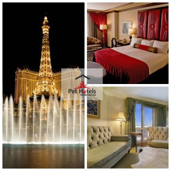pet friendly hotel-Las Vegas listed on Pet Hotels of America