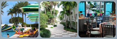 photos of pet friendly hotels in Miami Beach