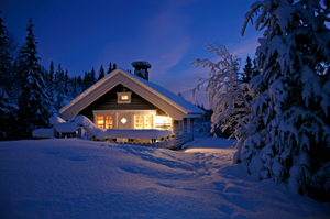 Pet friendly cabin in the snow at night